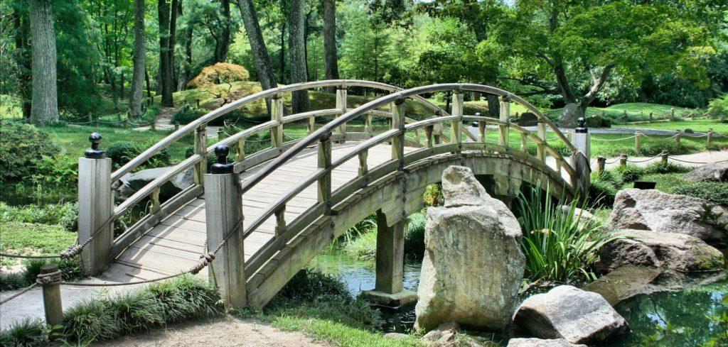 puente recurso bbva