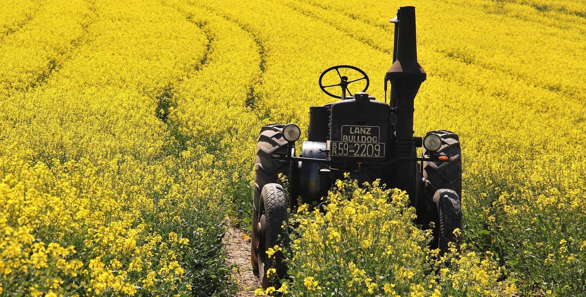 campo naturaleza commodities recurso