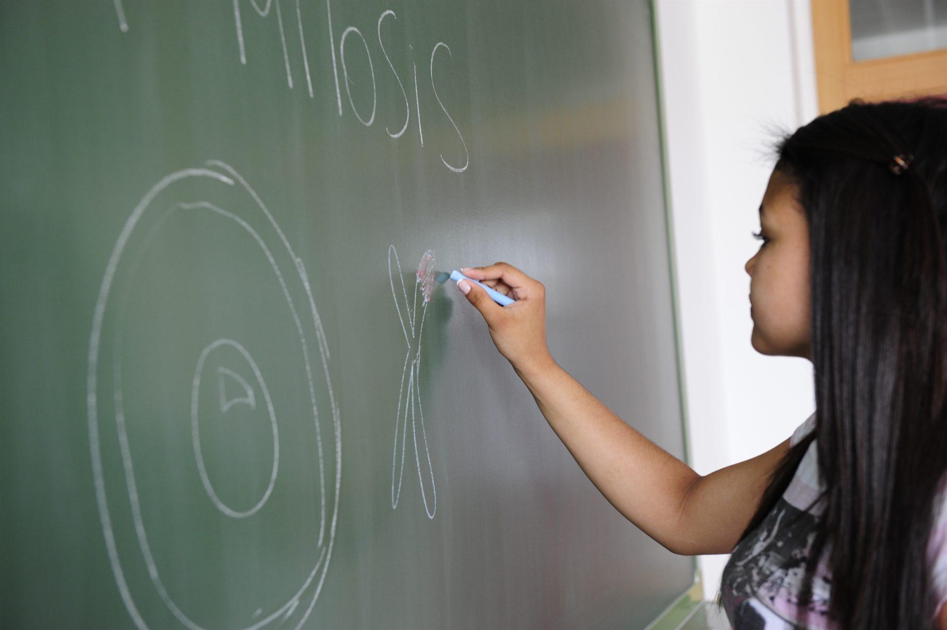 Uno de cada 10 estudiantes españoles de 15 años no alcanza un nivel básico de conocimiento, según el Informe Pisa de la OCDE Europa Press