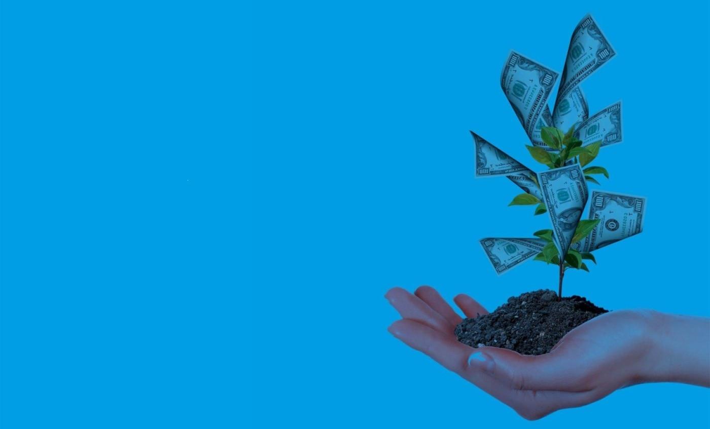 Banca responsable. Rentabilidad ajustada a principios. Sostenibilidad