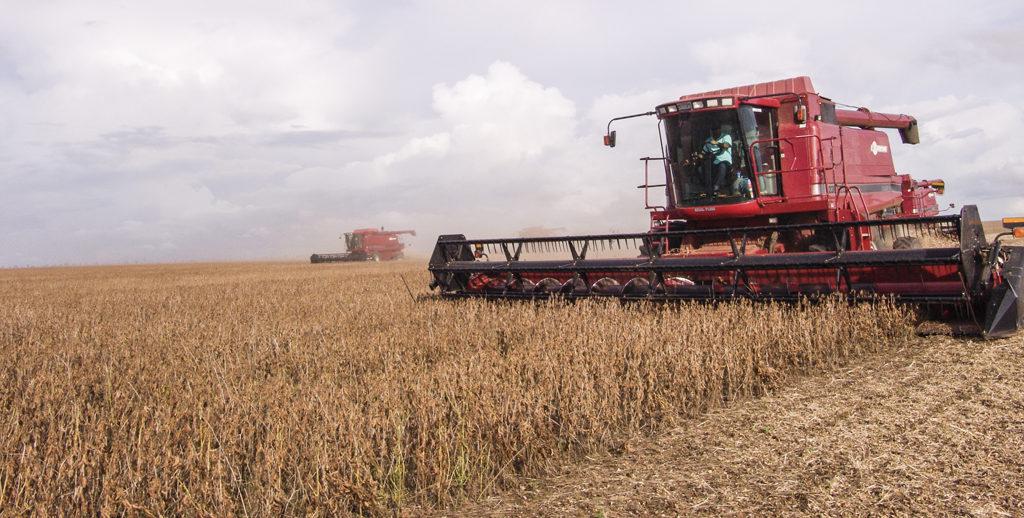 Fotografía actividad agrícola