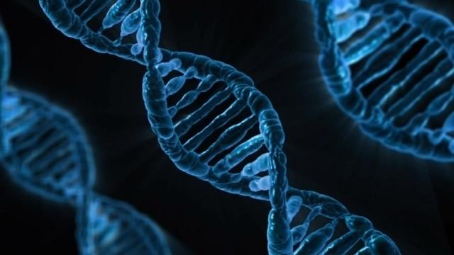 ADN-GENÉTICA
