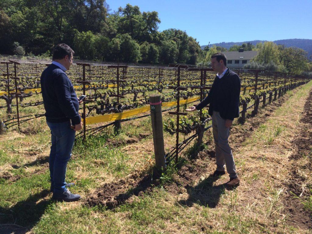 Fotografía de Josep Roca escuchando las explicaciones del enólogo Antoine Donnedieu, en las viñas de las Bodegas Araujo