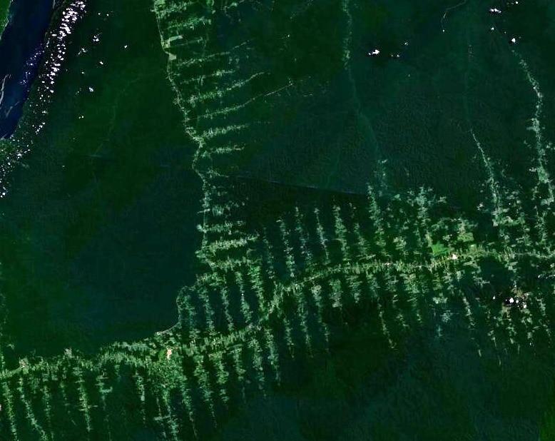 Imagen de la Amazonia desde el espacio_ NASA