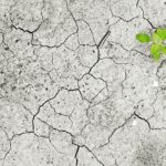 Recurso fotografía cambio climático