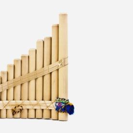 Fotografía de crecimiento economico peru bambu recurso BBVA