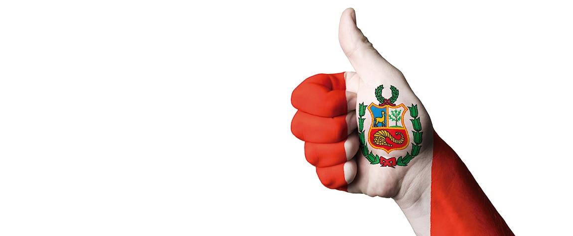 Fotografía de mano con los colores y el escudo del Perú.