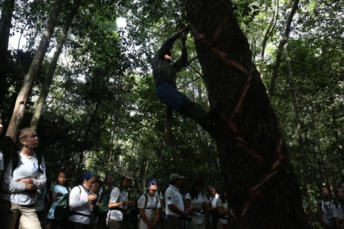 Los expedicionarios de Ruta BBVA atiende a la demostración de extracción de savia del chicozapote