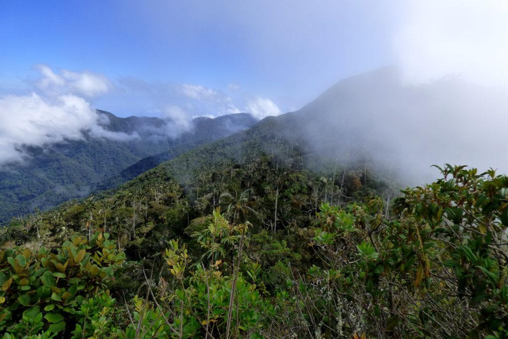 Fotografía de Alejandro Bayer Tamayo de la Cuchilla de San Lorenzo de la Sierra Nevada de Santa Marta
