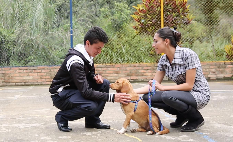 Fotografía de Animal Club crea fortalezas en una gran atención al cliente