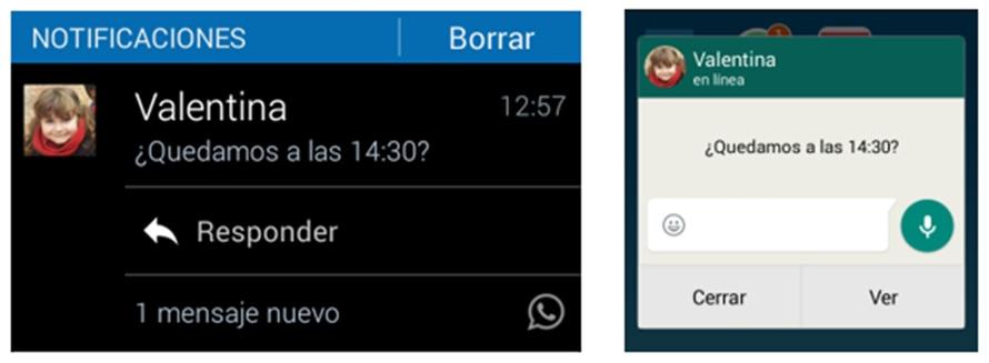 Notificaciones de Whatsapp recurso