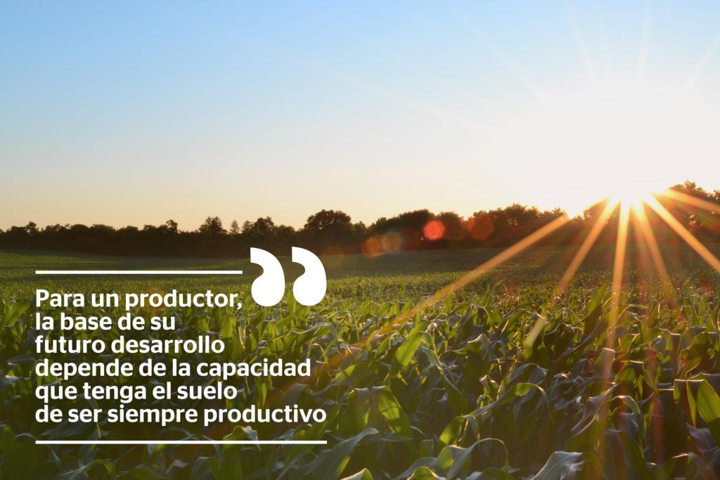 Imagen de plantación