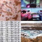 Previa composición Premios Fundación BBVA Fronteras del Conocimiento 2016