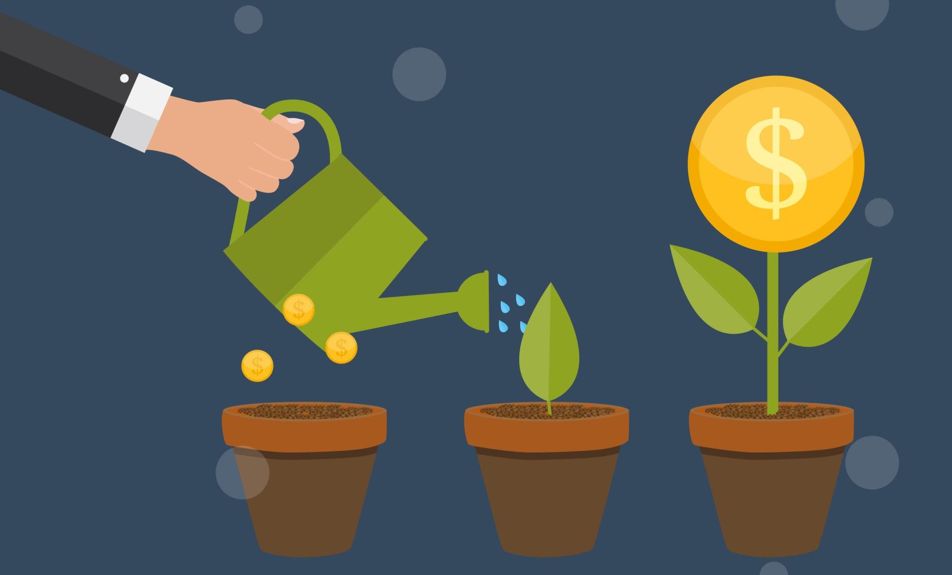crecimiento fintech recurso dolar economía