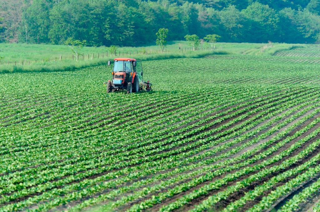 Resultado de imagen para agricolas