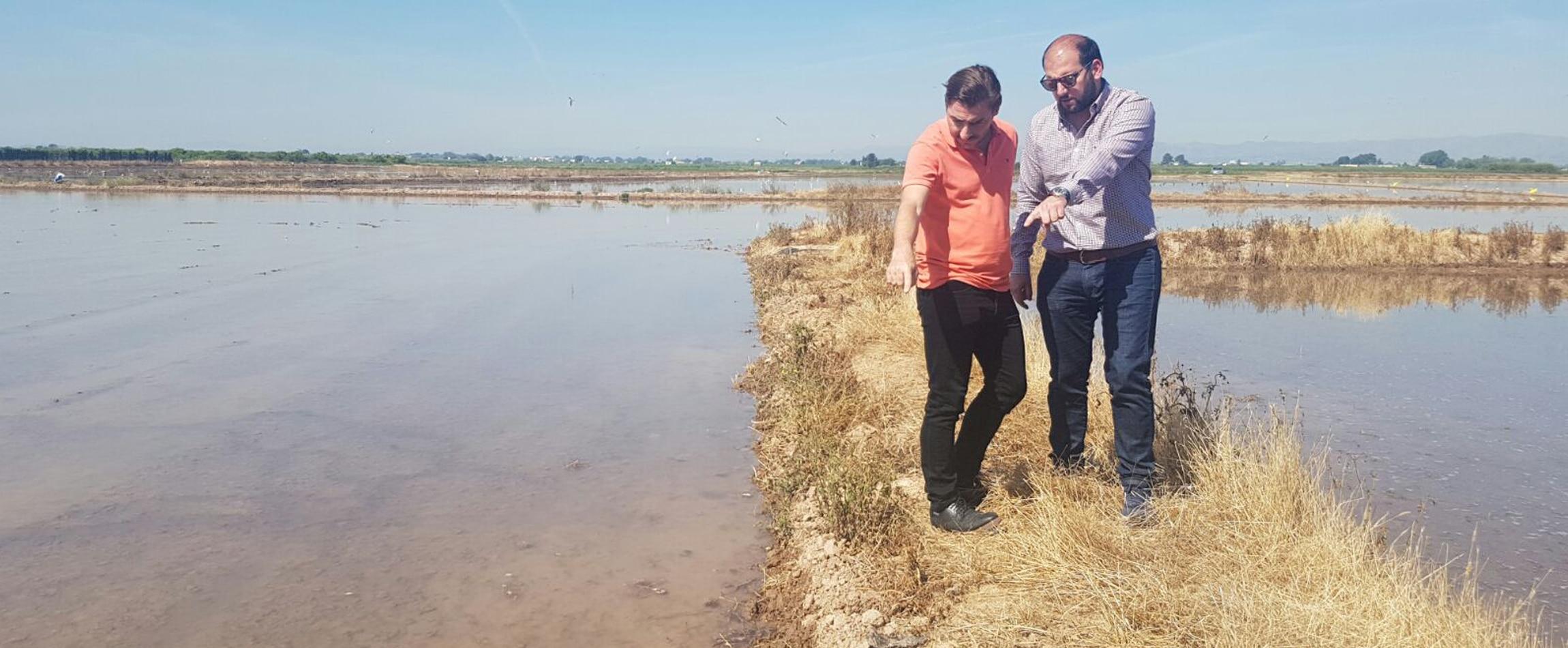 jordi-roca-visita-los-arrozales-de-la-albufera-valenciana