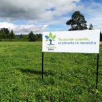 Reto Siembra BBVA Colombia por el medio ambiente