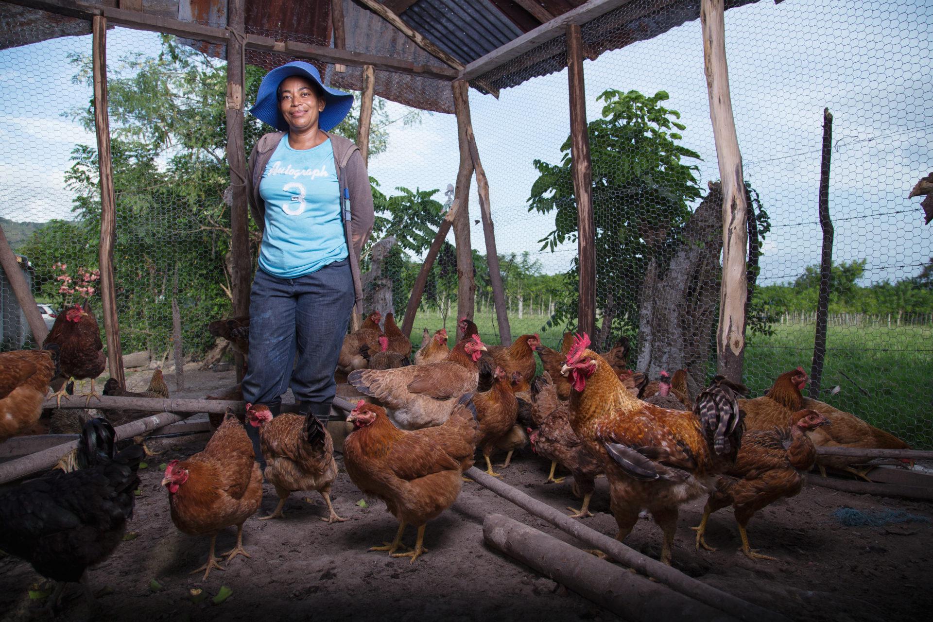Fundación microfinanzas y la ayuda al emprendimiento de las mujeres en América Latina BBVA