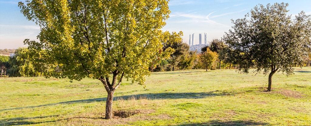 Comunidad de Madrid proyecto sostenible BBVA