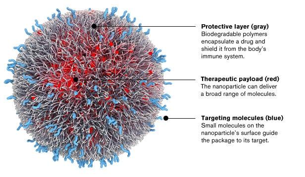 bio science ciencia innovacion tecnologia biomedicina nanomedicina investigacion bbva