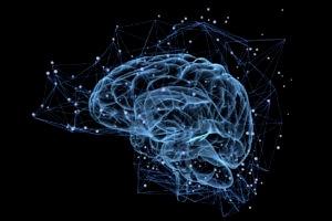 cerebro inteligencia bbva 09-08-2017