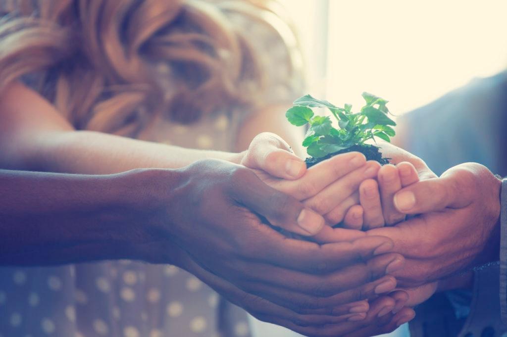 recurso -sostenibilidad - banca responsable - BBVA