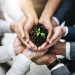 recurso planta medio ambiente bbva