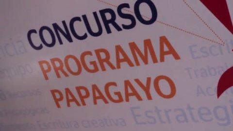 Concurso Programa Papagayo 2017