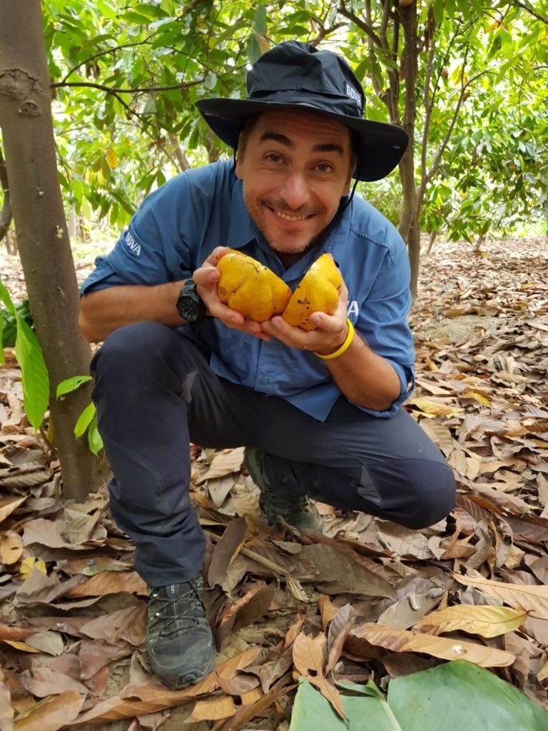 Jordi Roca con un fruto de cacao blanco de Piura en una plantación