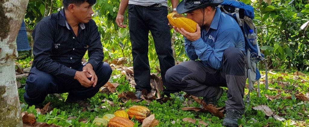 Jordi Roca probando los frutos de cacao