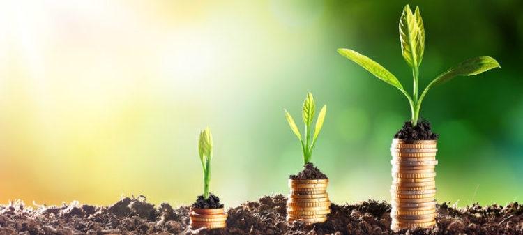 hogar-verde-cambio-reciclaje-ahorro-ecologia-habitos-medioambiente-bbva