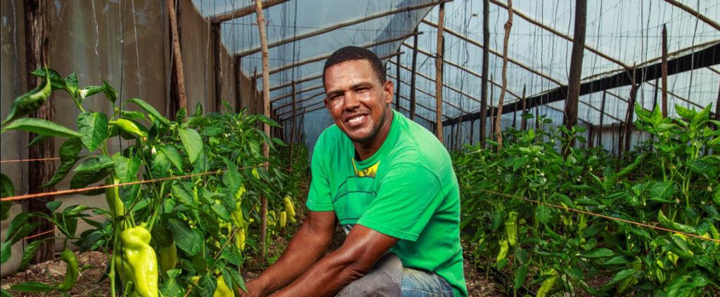 Fotografía de un agricultor al que atiende Banco Adopem, entidad de la FMBBVA en Rep. Dominicana