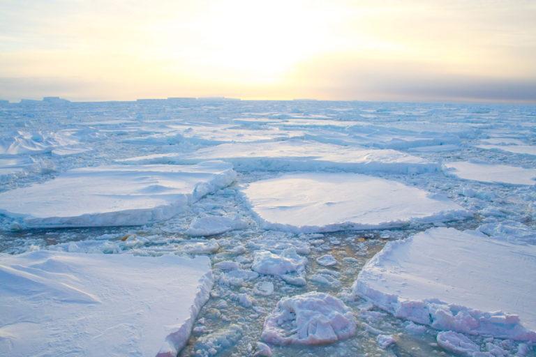 cambio-climatico-sostenibilidad-proyecto-proteccion-bancos-medioambiente-financiación-ecosistema-financiacion-contaminacion-inundacion-recurso