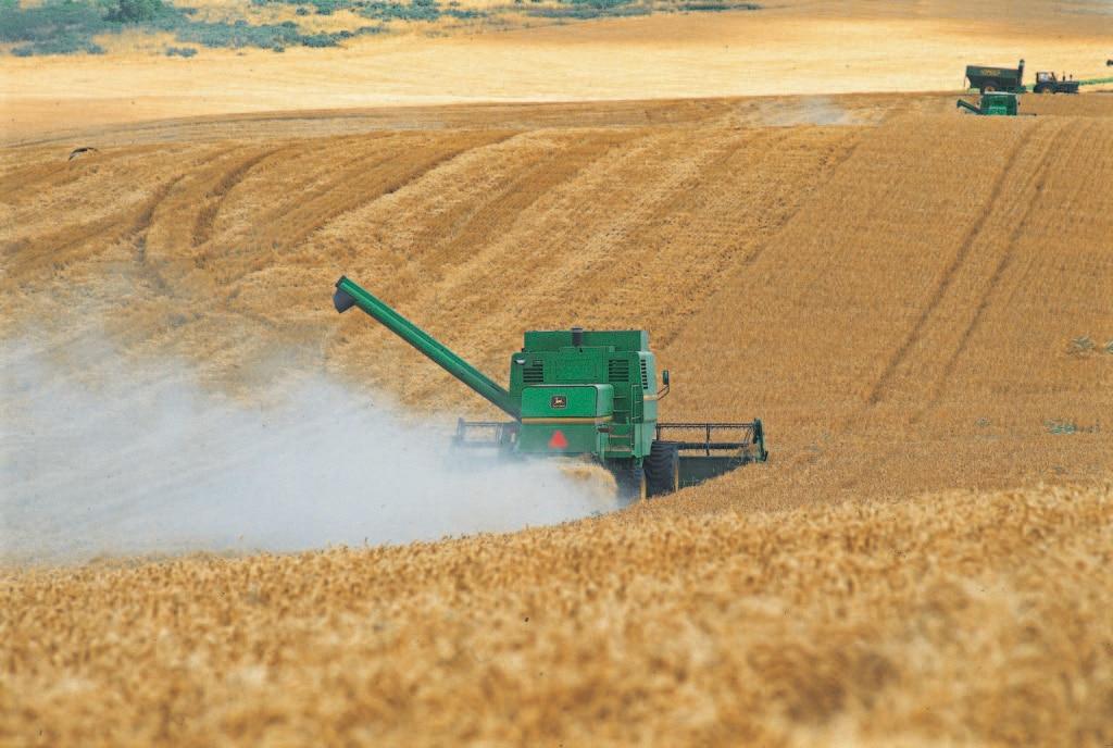 industria-agropecuaria-argentina-agroindustria-macroeconomia-especial-argentina-bbva-frances-bbva