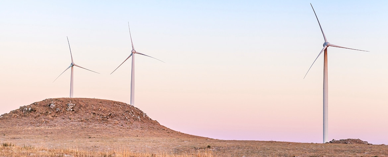 energia renovable-ecosistema-progeso-medio ambiente-economia-bbva