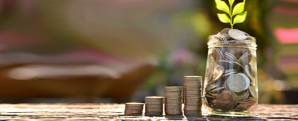 Fotografía de dinero, monedas, planta, crecimiento, verde.