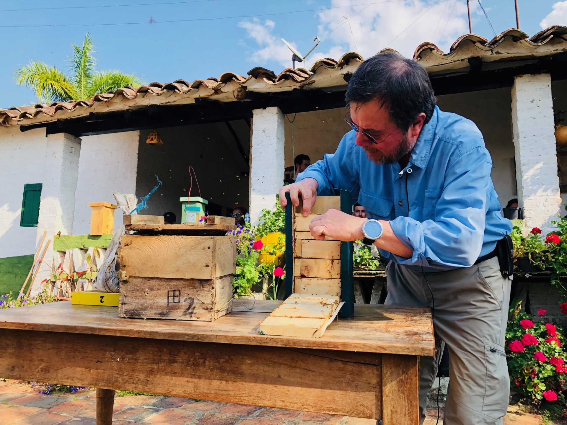 Comunidades campesinas de Santander ven en las abejas su futuro