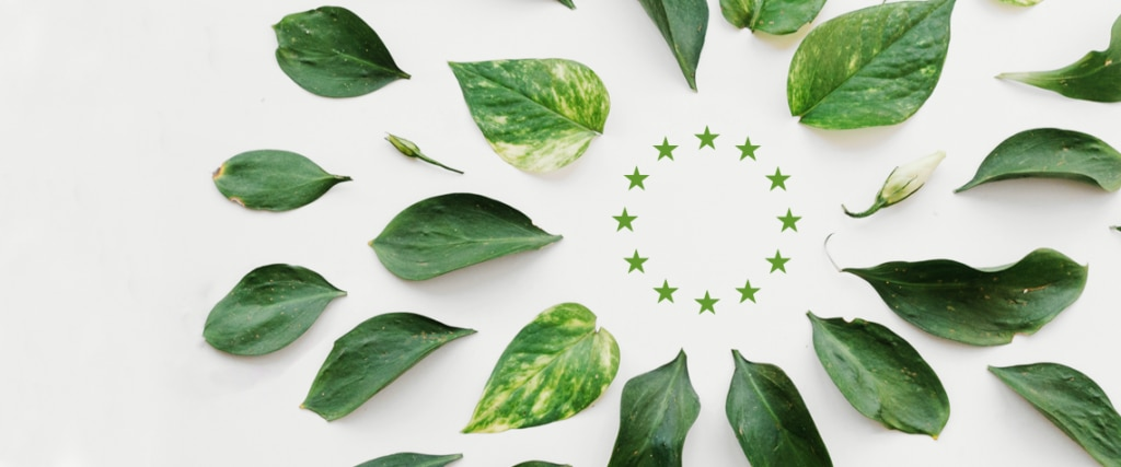 fotografia de bandera verde union europea, hojas verdes, estrellas verdes BBVA