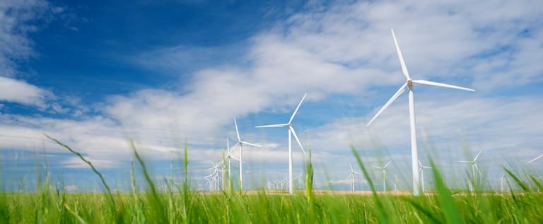 Fotografía de BBVA proyecto sostenible, parque eólico, aerogenerador, campo, naturaleza, medio ambiente, financiación sostenible, verde