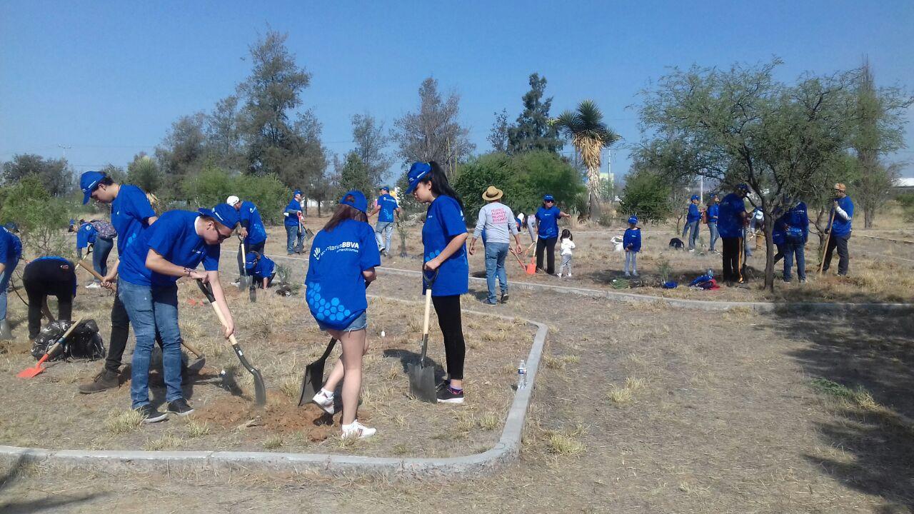 Reforestación Voluntarios BBVA México - Aguascalientes