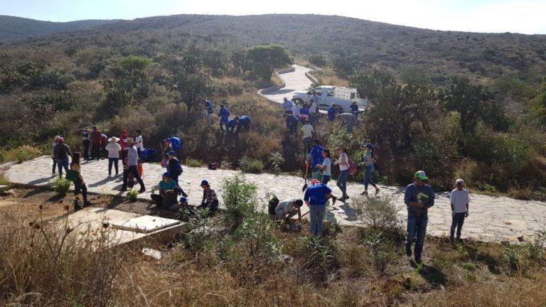 Reforestación Voluntarios BBVA México - Zacatecas