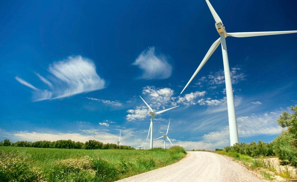 fotografia de molinos de viento a los lados de un camino BBVA