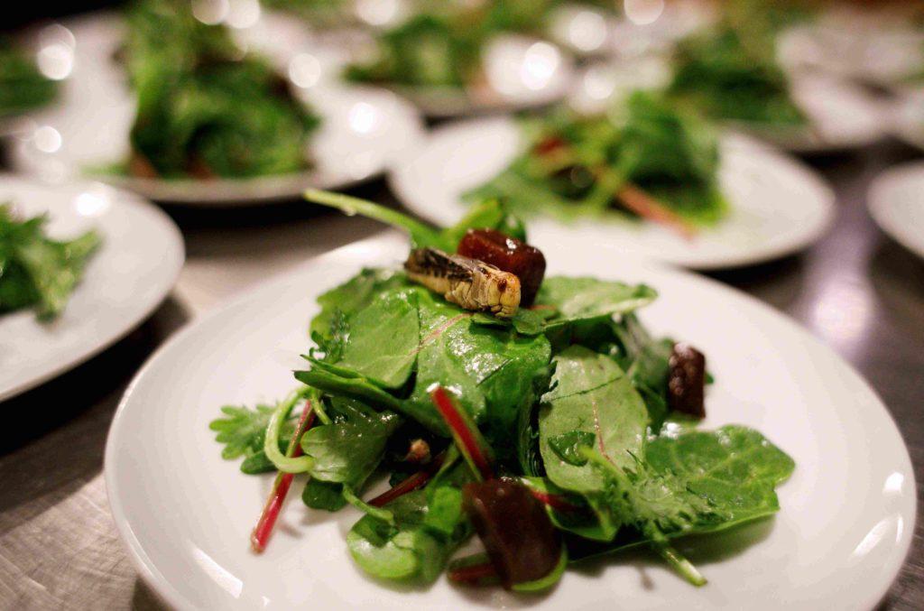comida ecologica plato recurso bbva