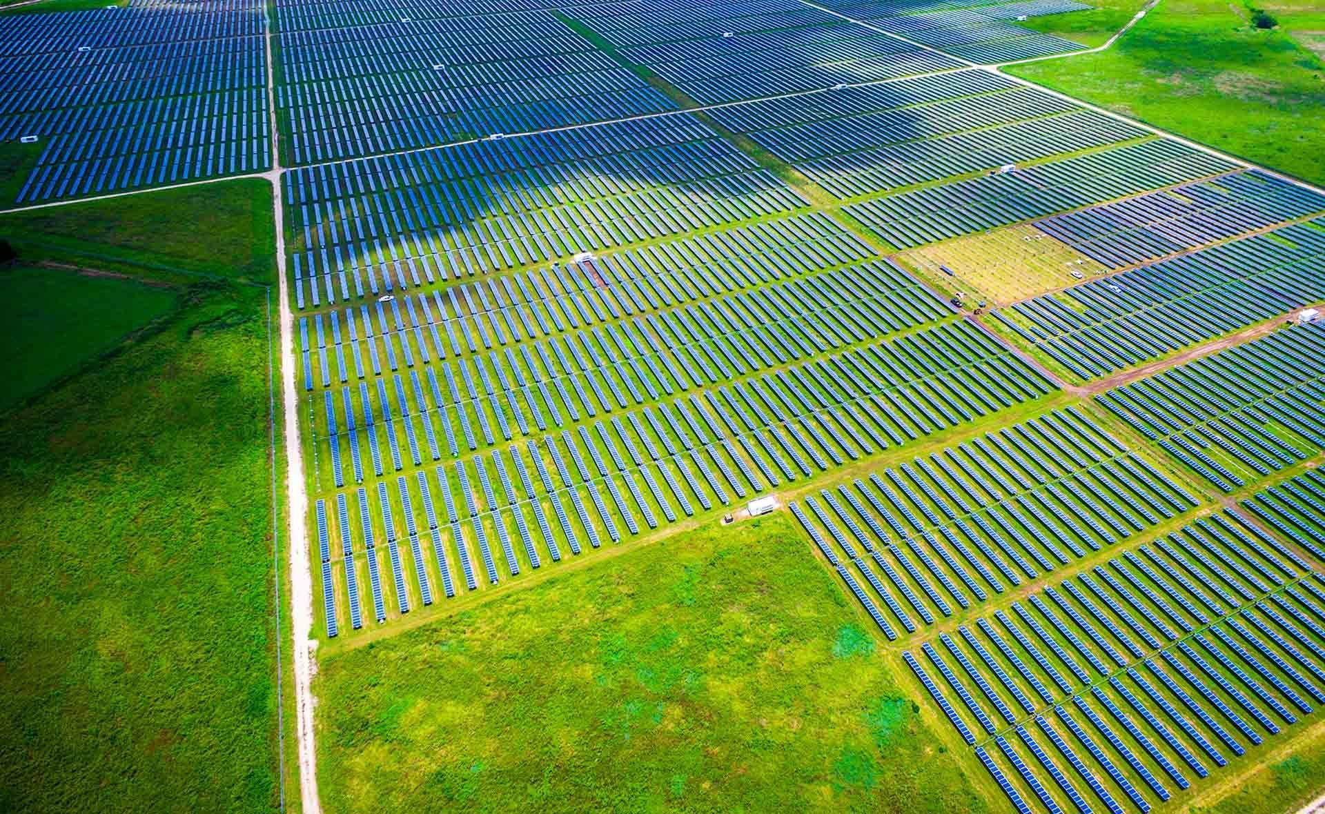 Fotografía de Cambio, verde, medioambiente, sostenible, sostenibilidad, cambio climático