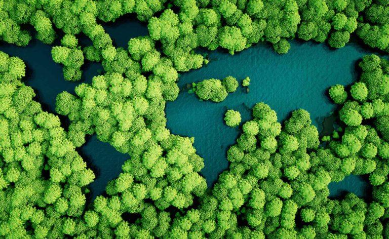responsable bonos verdes sostenibilidad recurso bbva