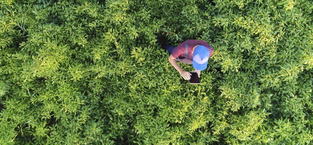 BBVA Momentum promueve una formación de impacto para empresas ambientales