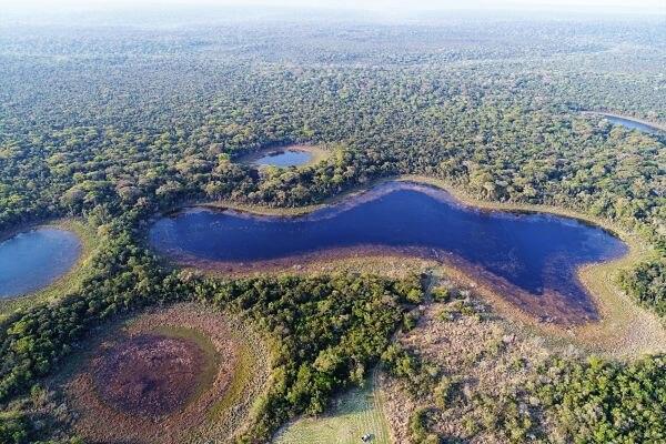 Reserva Mbaracayu-Paraguay-Sostenibilidad-Biodiversidad-Premios-Fundación Moisés Bertoni-Fundación BBVA