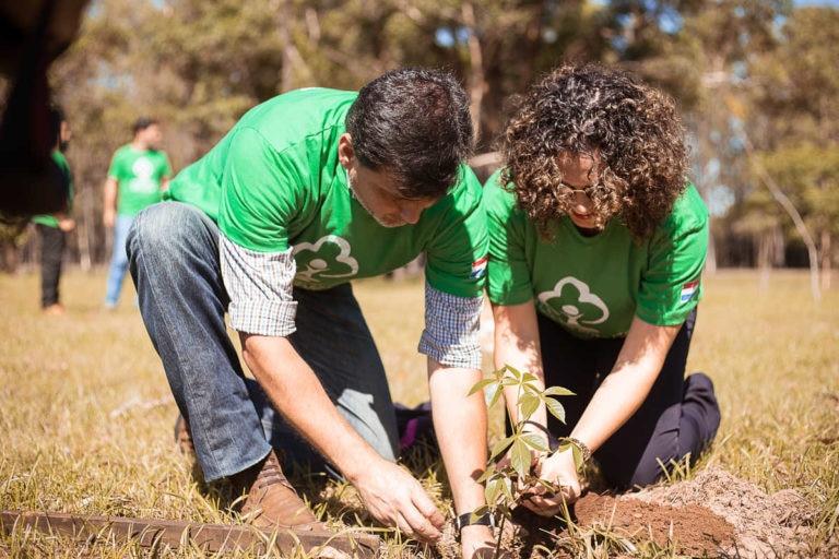 Jornada de Arborización