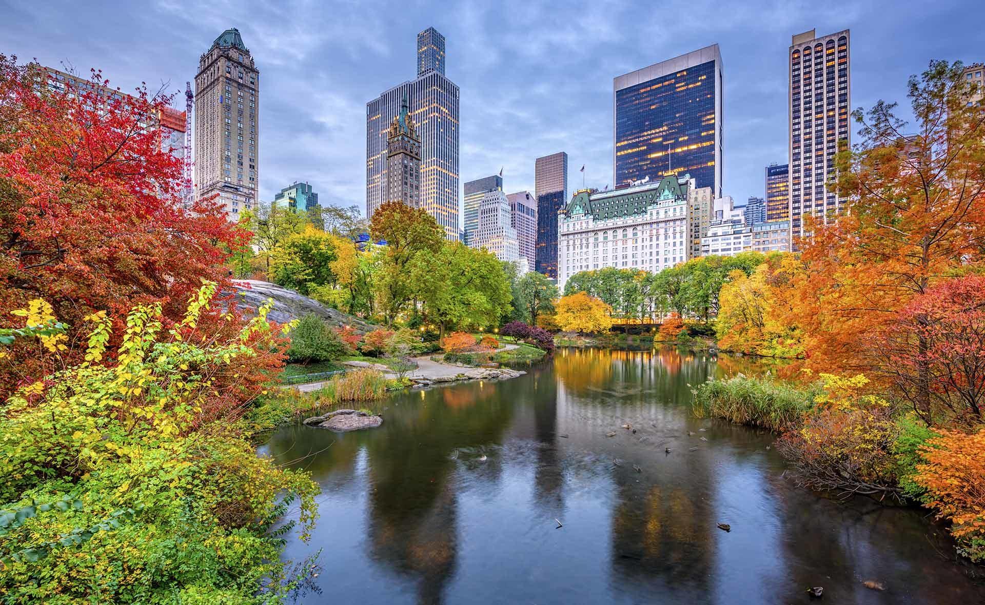 Fotografía de Ciudad, bosque, árboles, otoño, NY, edificios, agua, lago
