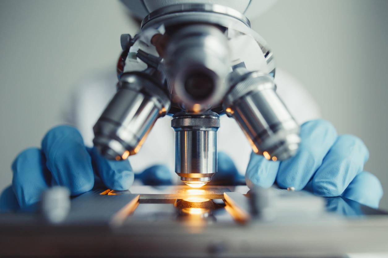 investigacion biologia experimento laboratorio bbva recurso